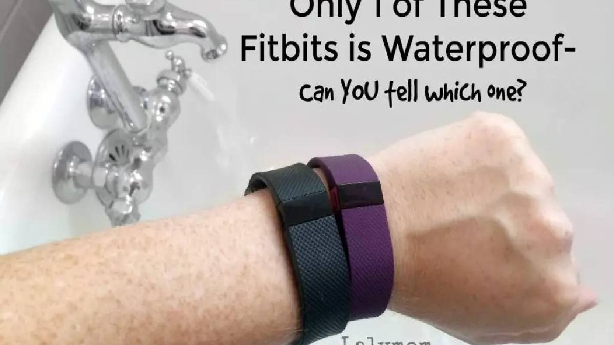 Fitbit Charge 2 waterproof – About, Designing, Display, and More