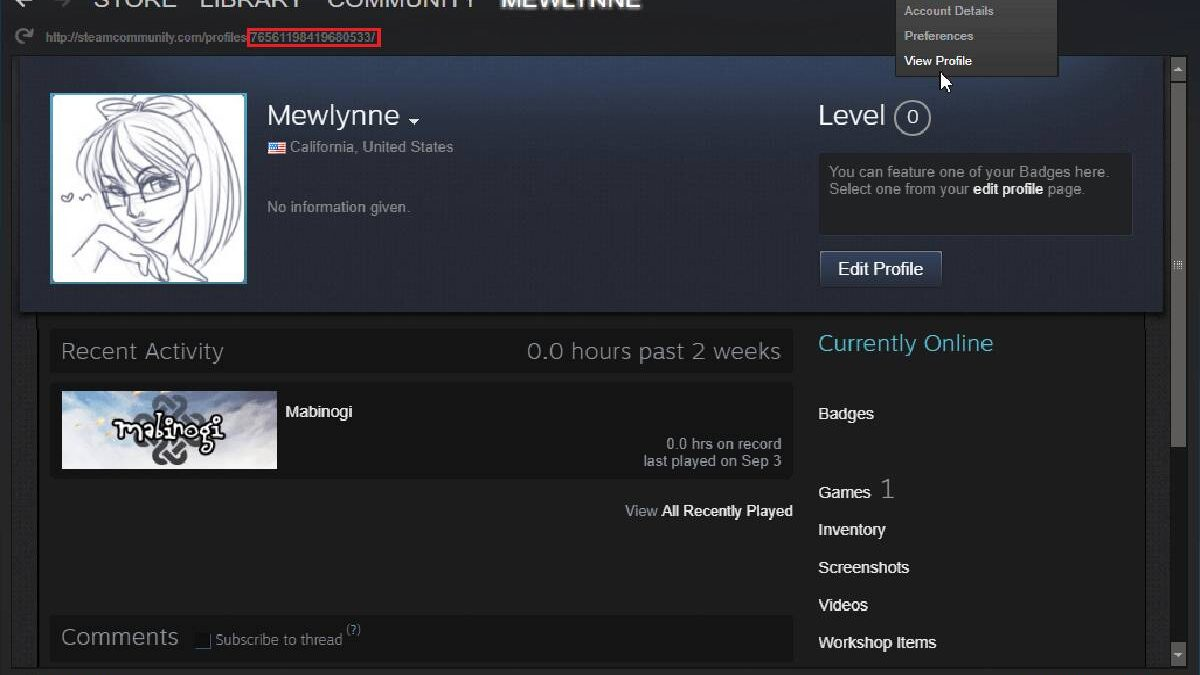 Where does Steam Store Screenshot – Creating, Findings, Steps and More