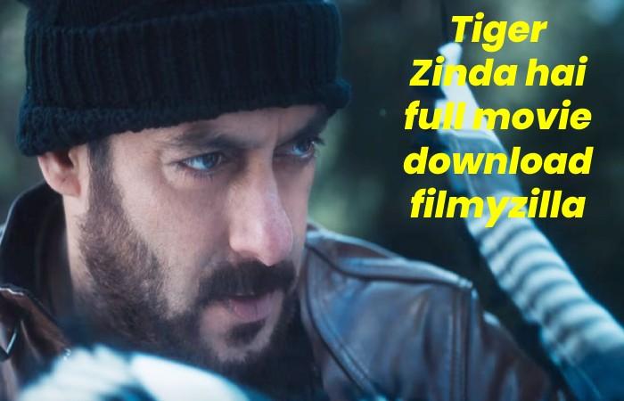 tiger zinda hai (3)